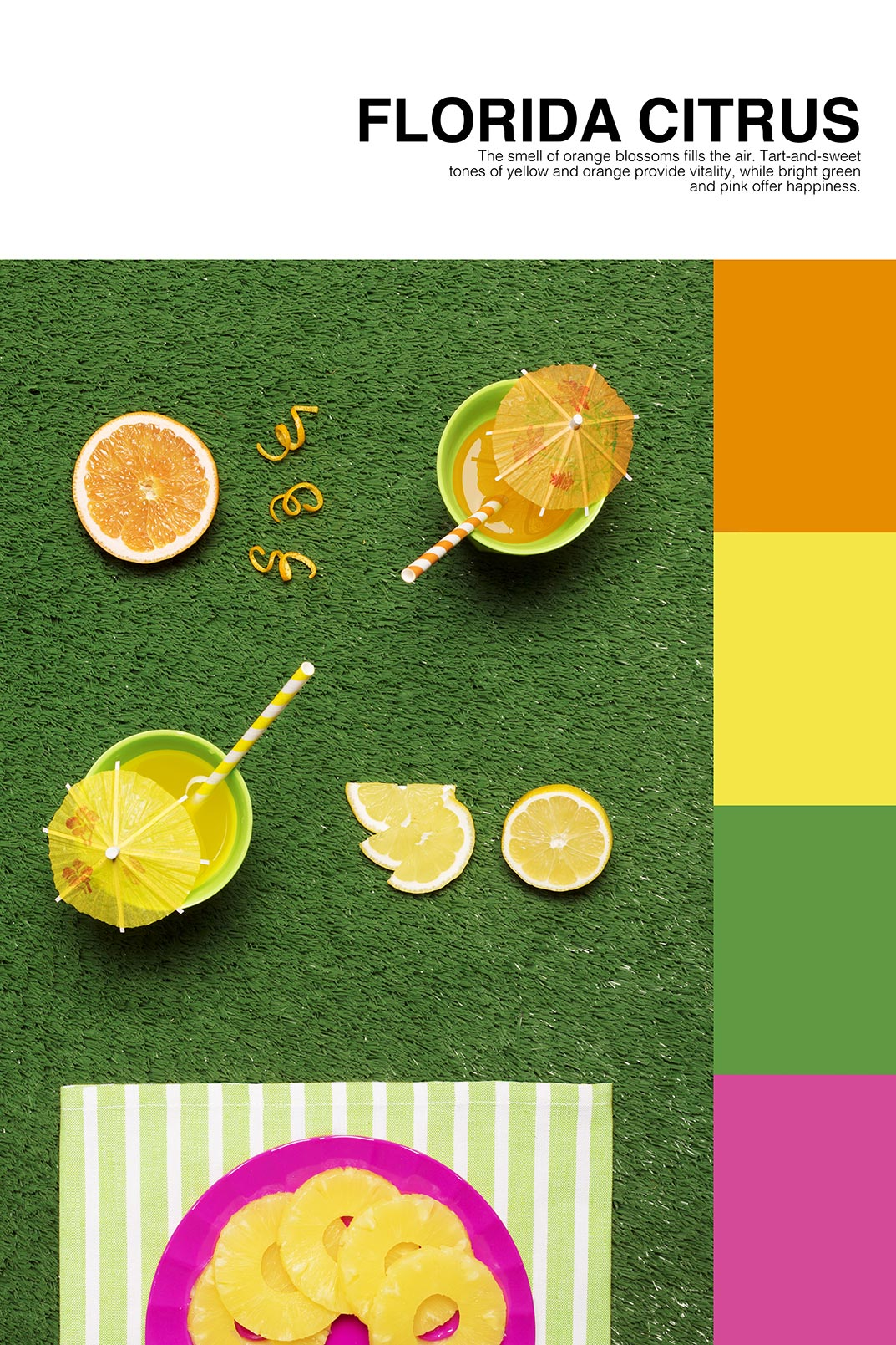 isabella-vacchi-color-coded-food-photography-2