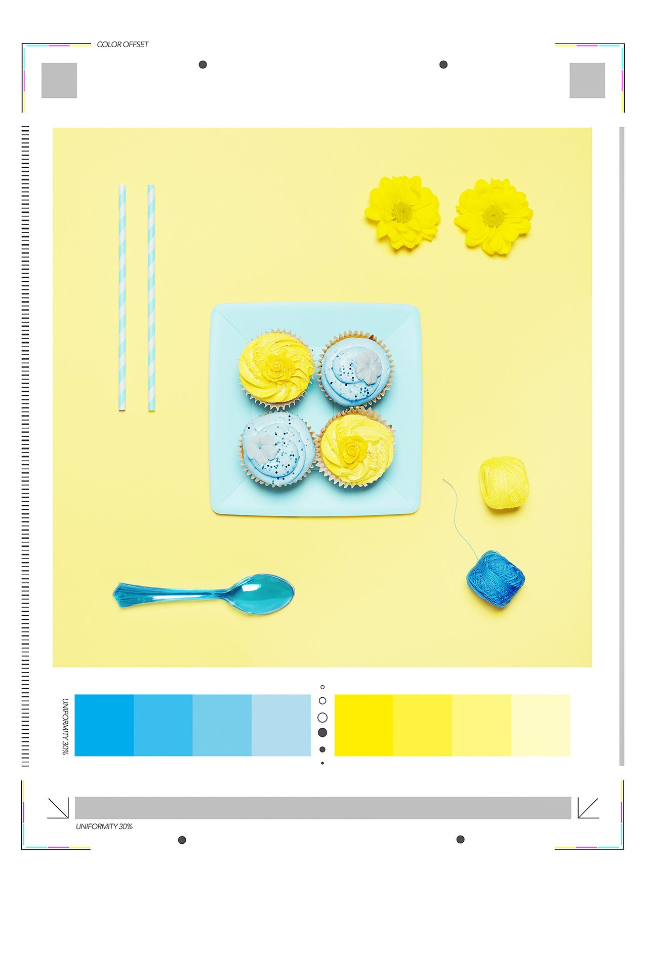 isabella-vacchi-color-coded-food-photography-9